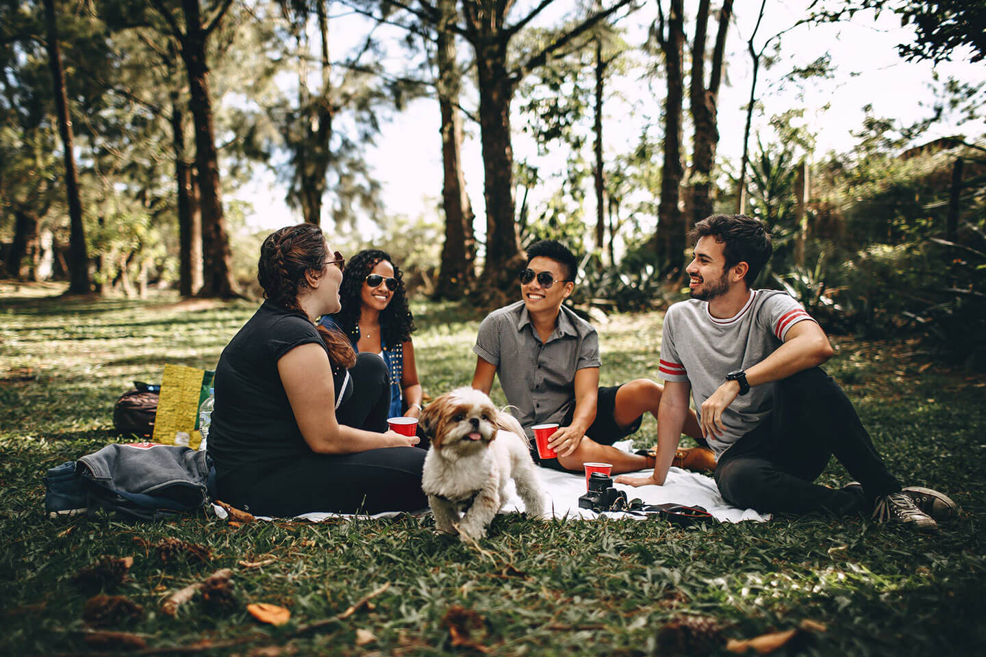 Group of people with dog having a picnic outside