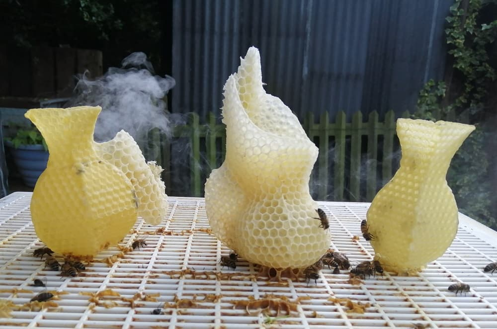 The image is of student artwork. Three sculptures are made out of beeswax, with bees crawling over them.