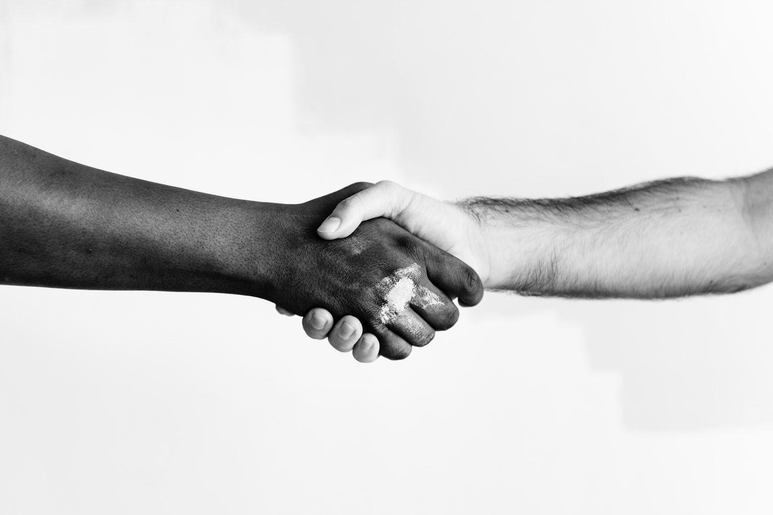 Human beings shaking hands