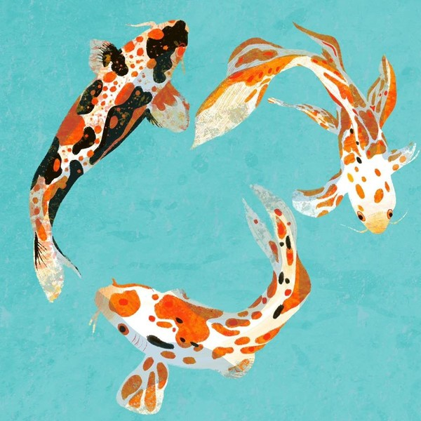A painting of a bird's eye view of three koi carp fish swimming together in a circle