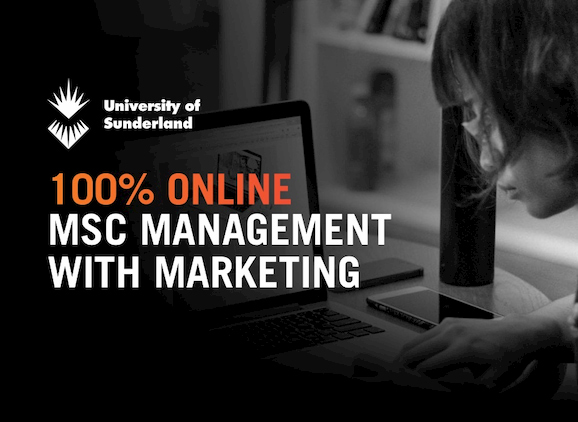 MSc Management with Marketing, student using a laptop